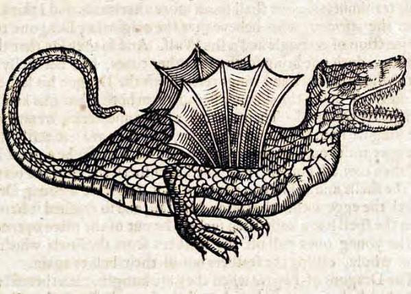BEVINGET OG FARLIG: Blant de som skrev om drager i naturhistoriske verk på 1600-tallet finner vi engelskmannen Edward Topsell. I hans bok The History of Four-Footed Beasts and Serpents beskriver han ulike kjennetegn ved dragearter, i tillegg til en rekke andre fantastiske fabeldyr. Dette er hans illustrasjon av en bevinget drage.